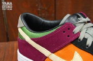 viotech-nike-dunk-low-71